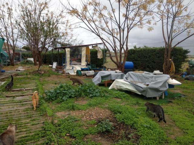 Storm Elsa raast over Spanje- Veel schade bij Villa Felis Villaf11