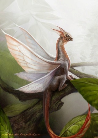 Celestial Spirit Magic: God of the Celestial Spirit Realm Form Leafdr10