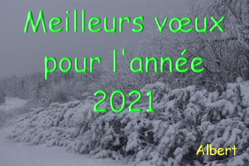 Joyeuses fêtes et bonne année 2021 Bonne_10