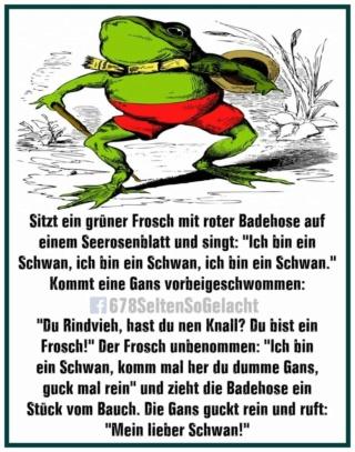 Mein lieber Schwan 16257510