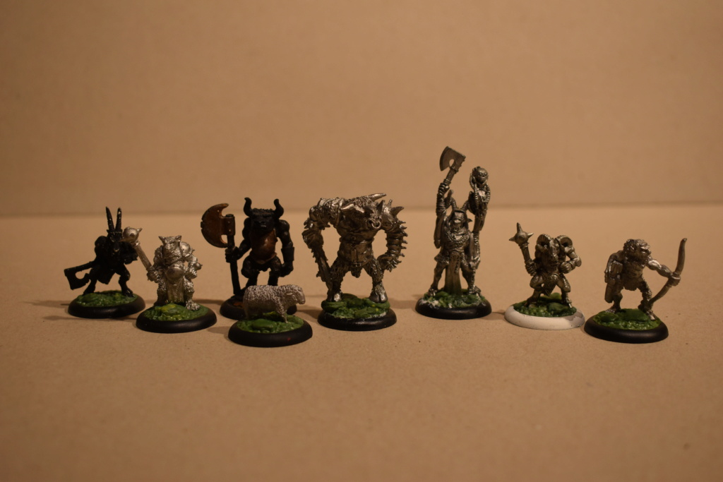beastmen - New Warband / BEASTMEN Empire in Flames   AND  Wissenlander! Dsc_0118