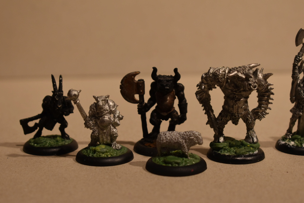 beastmen - New Warband / BEASTMEN Empire in Flames   AND  Wissenlander! Dsc_0119