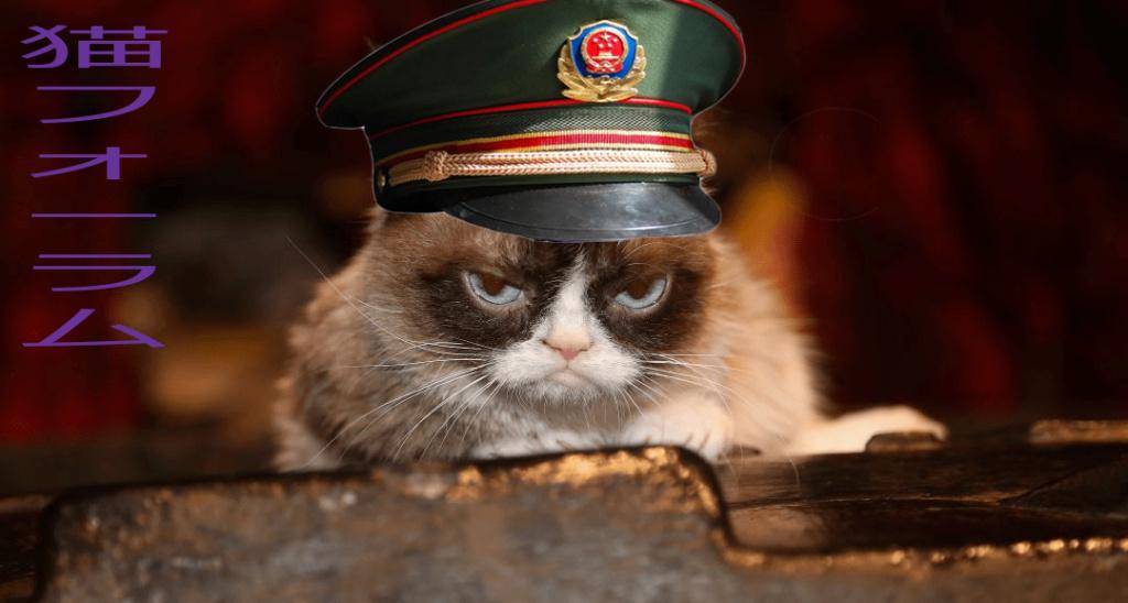 猫フォーラム