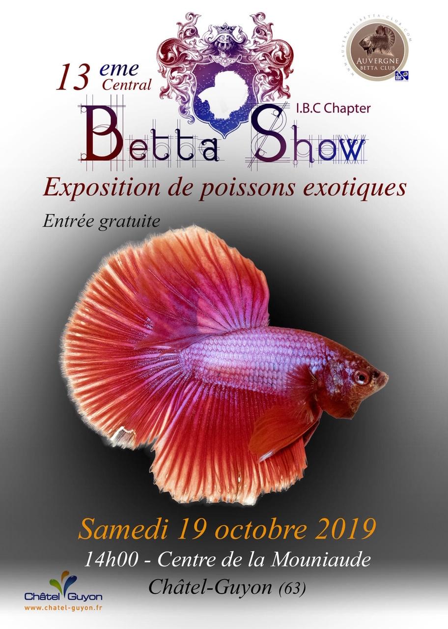13me Auvergne Betta Show 18-19 octobre 2019 Img_2811