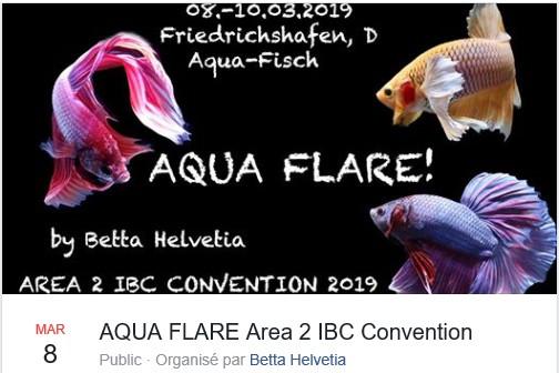 Congrès annuel européen de l'IBC - mars 2019 - Friedrichshafen Sans_t11