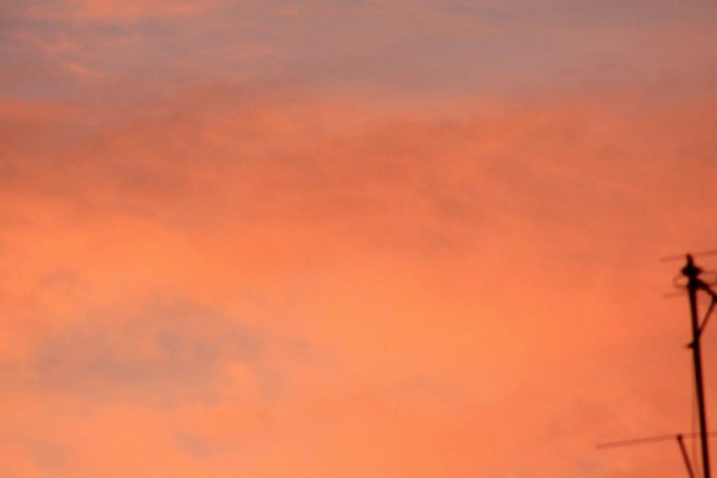 Brocéliande au levé d'un jour d'automne qui se transforme en jour de pluie 17705010
