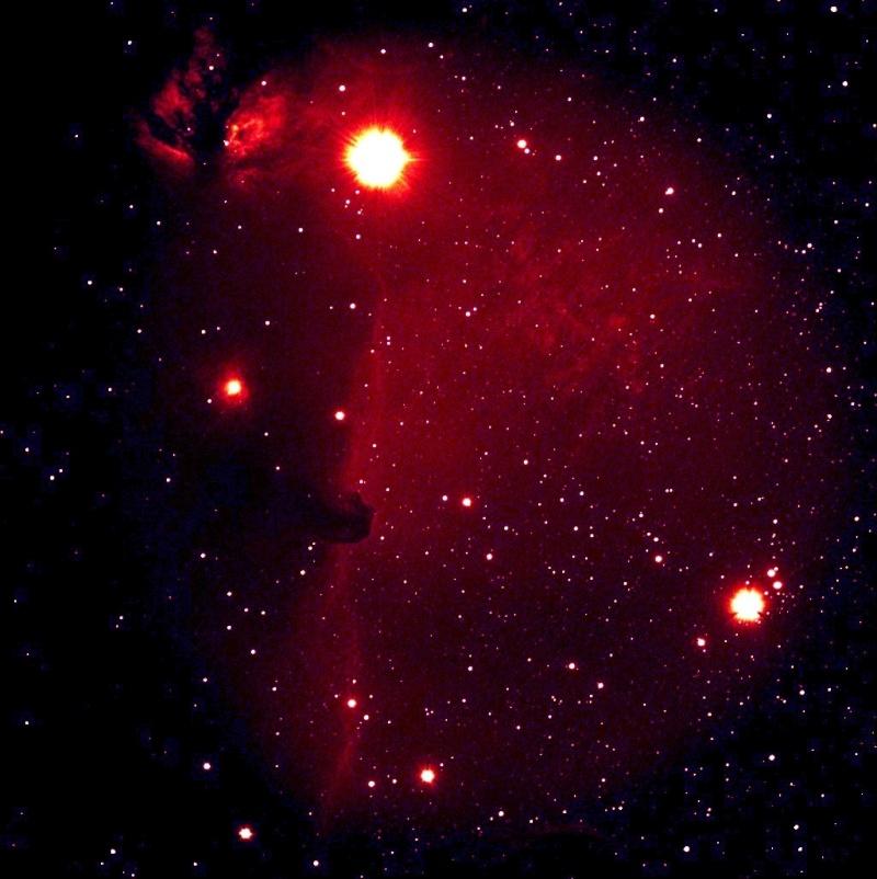 ...En direk Live de J'mepp...Horse Head Nebula Sansno10