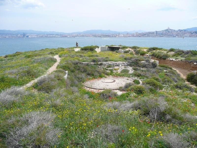 Batterie Cap de Croix (Frioul, Marseille, 13) Ancien10