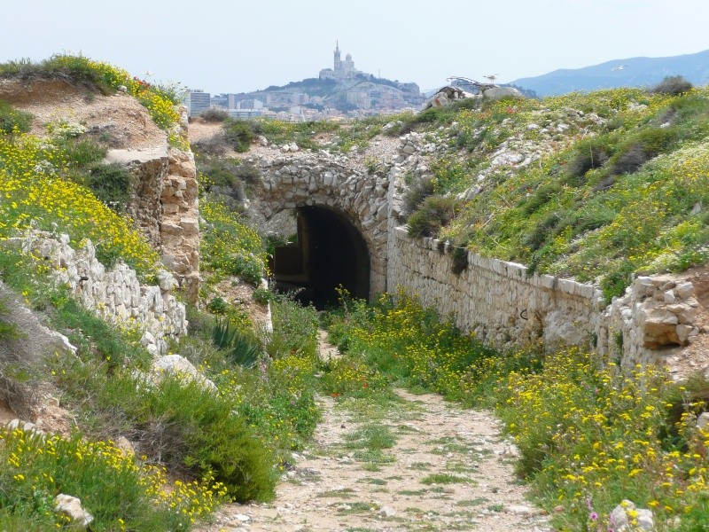 Batterie Cap de Croix (Frioul, Marseille, 13) Ancien14