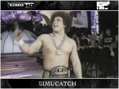Wrestlemania 28 Carlit11