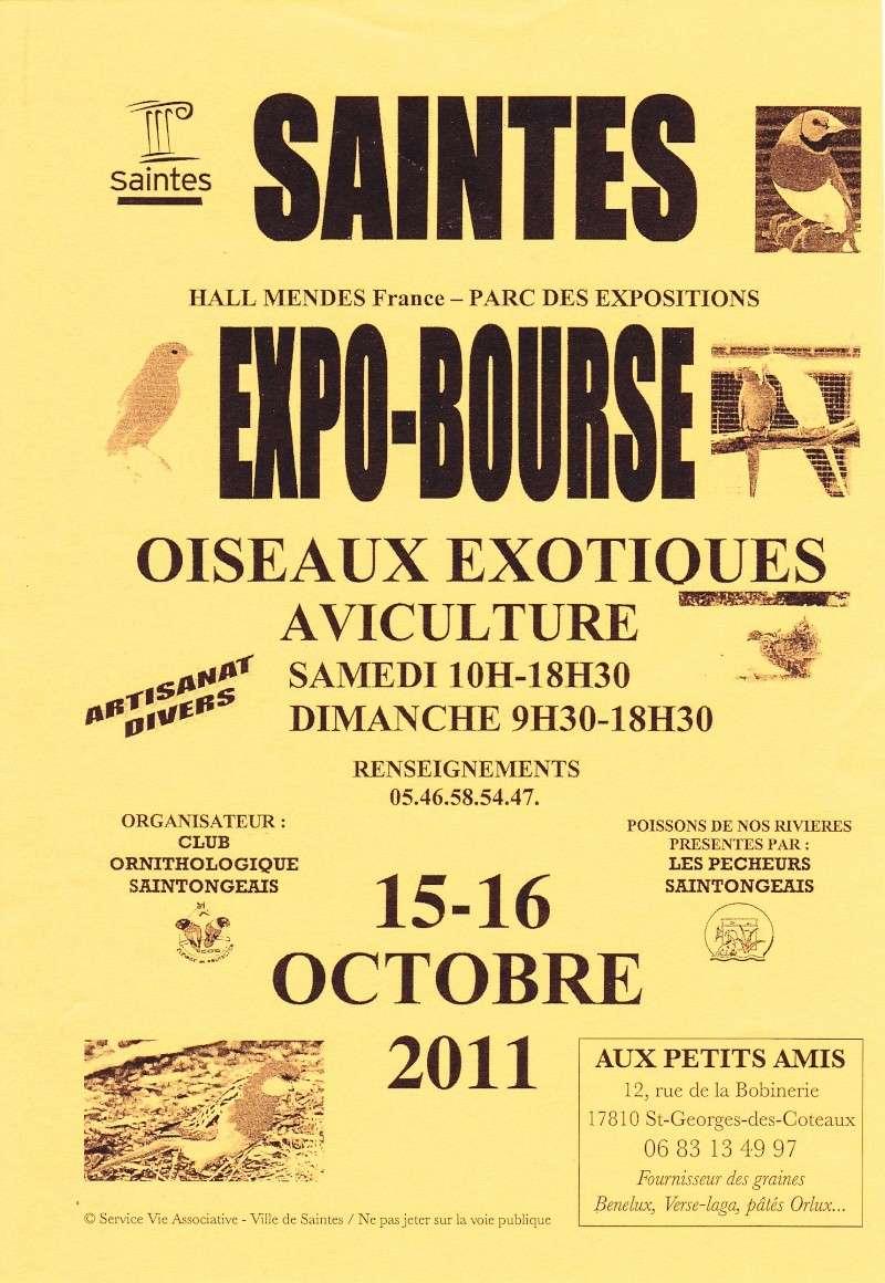 Expo bourse oiseaux exotiques - Aviculture le 15 et 16 octobre 2011 à Saintes Img13