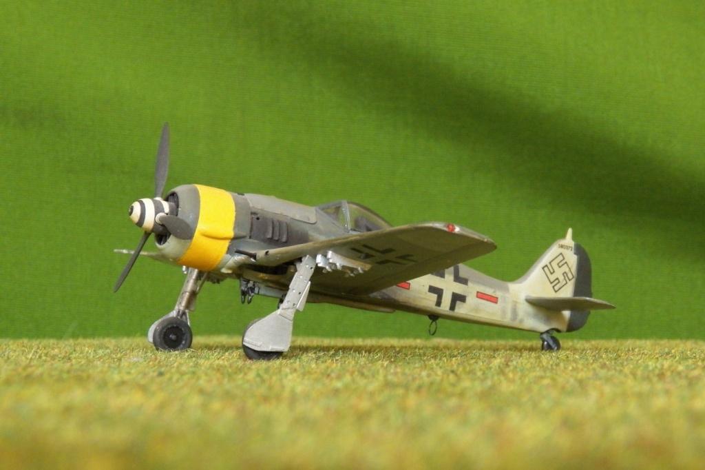 [Airfix] Focke Wulf Fw 190 F-8, 1978 100_1311