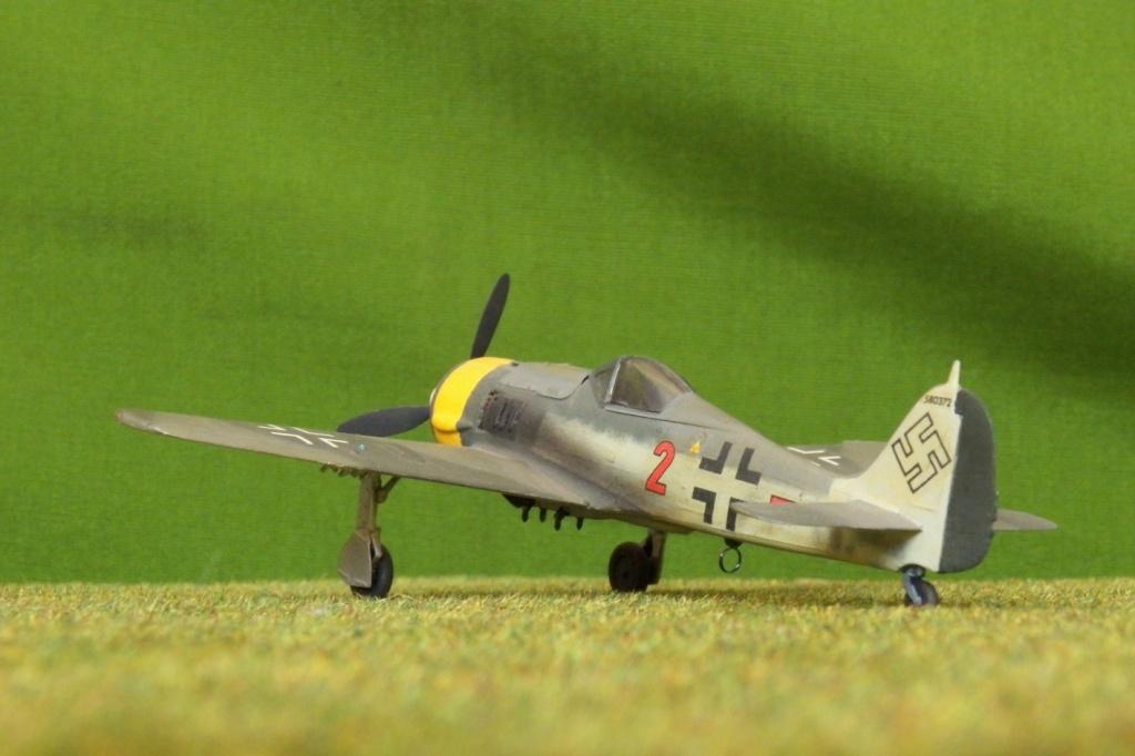 [Airfix] Focke Wulf Fw 190 F-8, 1978 100_1312