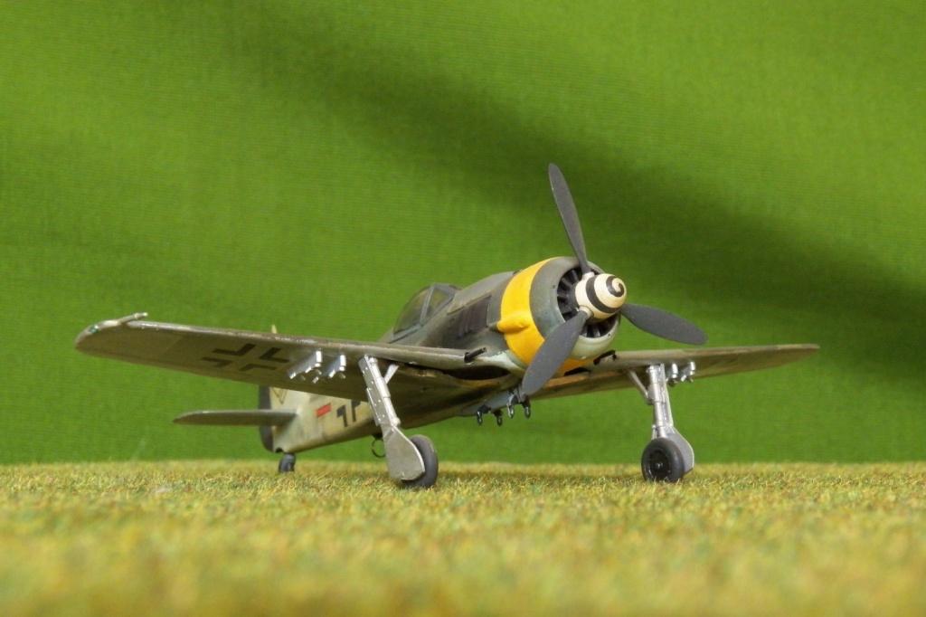 [Airfix] Focke Wulf Fw 190 F-8, 1978 100_1313