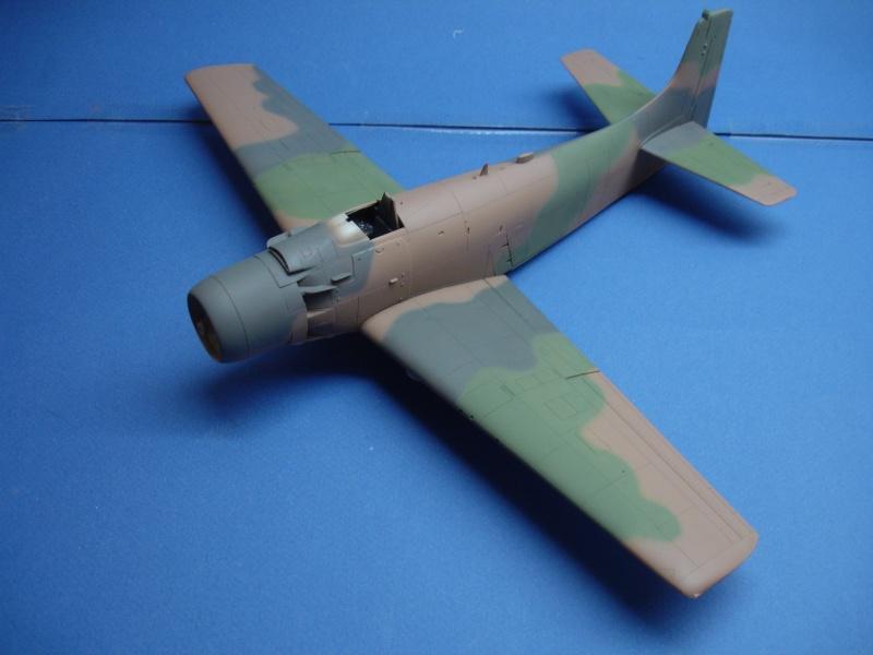 Douglas A1H Skyraider SVNAF  Dsc00214