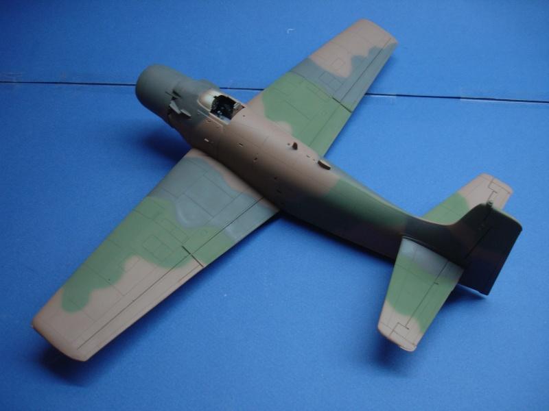 Douglas A1H Skyraider SVNAF  Dsc00215