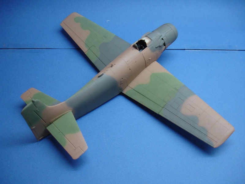 Douglas A1H Skyraider SVNAF  Dsc00216