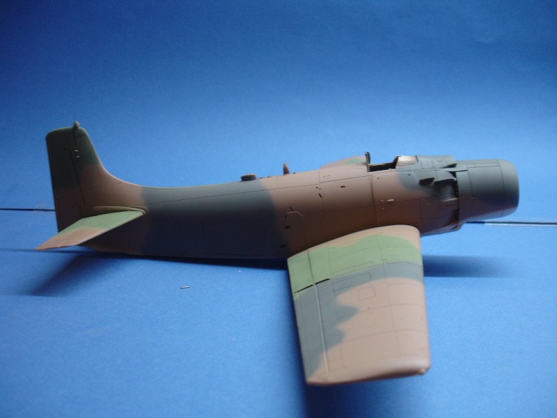 Douglas A1H Skyraider SVNAF  Dsc00217