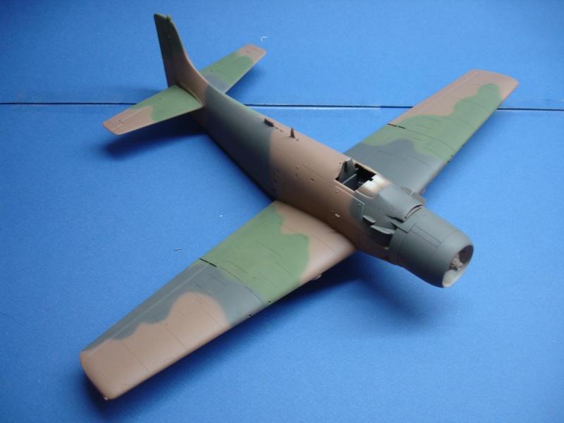 Douglas A1H Skyraider SVNAF  Dsc00218