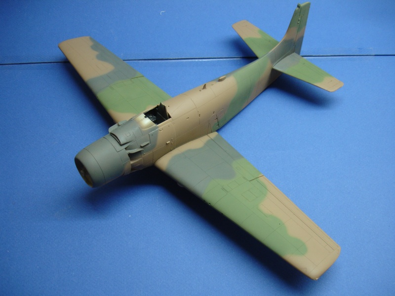 Douglas A1H Skyraider SVNAF  Dsc00219