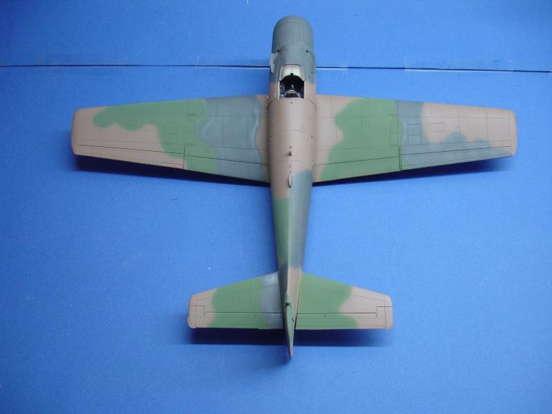 Douglas A1H Skyraider SVNAF  Dsc00220