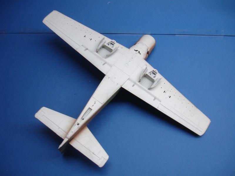 Douglas A1H Skyraider SVNAF  Dsc00221