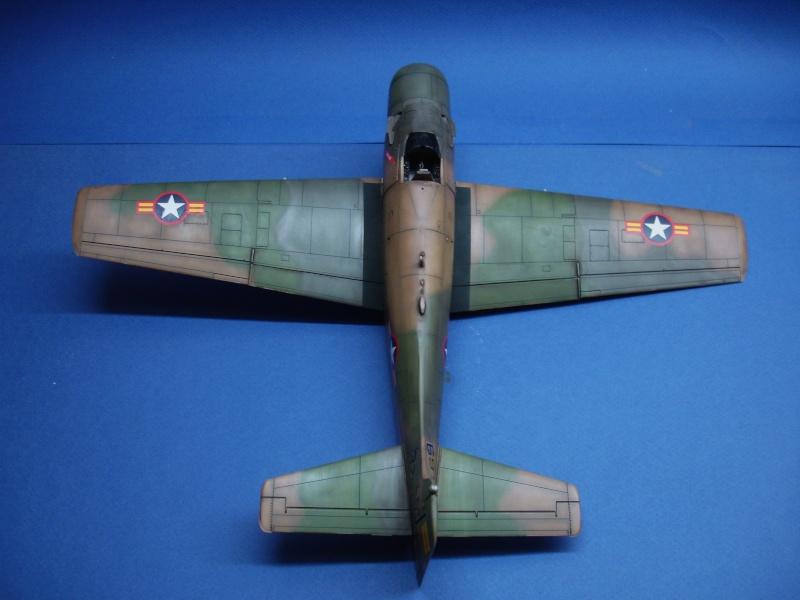 Douglas A1H Skyraider SVNAF  Dsc00225