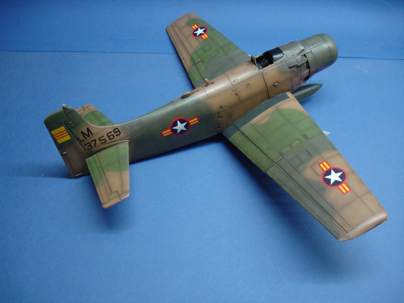 Douglas A1H Skyraider SVNAF  Dsc00226