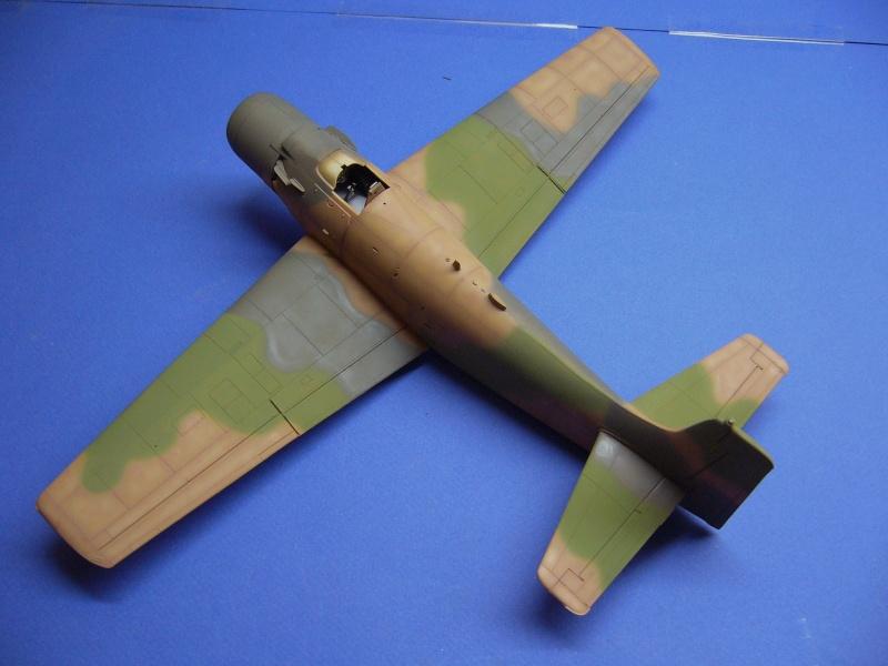 Douglas A1H Skyraider SVNAF  P1020319