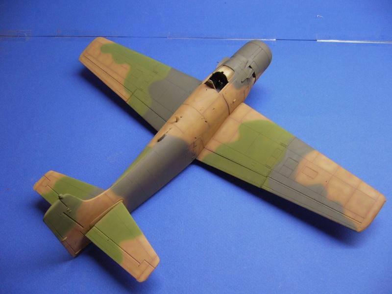 Douglas A1H Skyraider SVNAF  P1020320