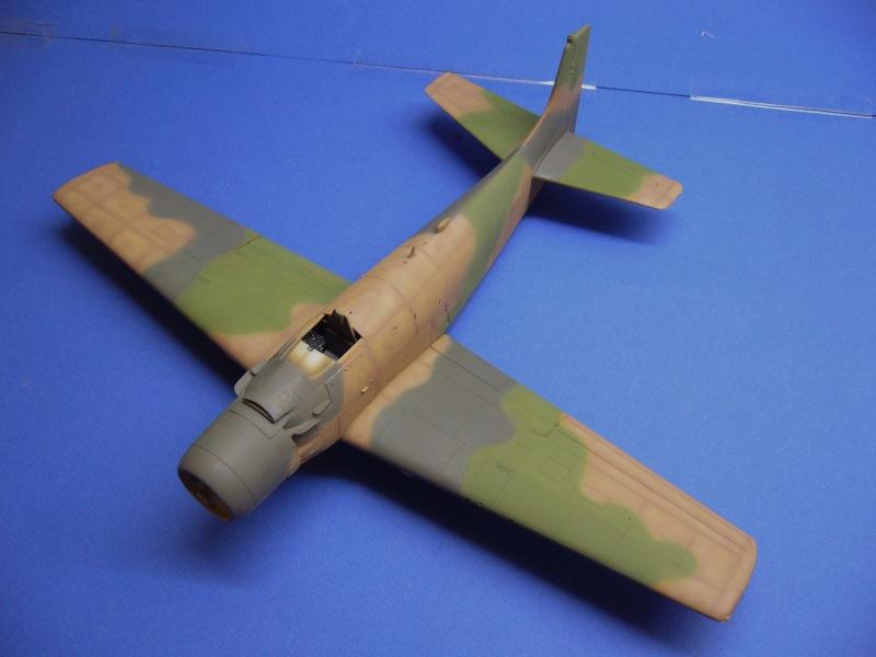 Douglas A1H Skyraider SVNAF  P1020321