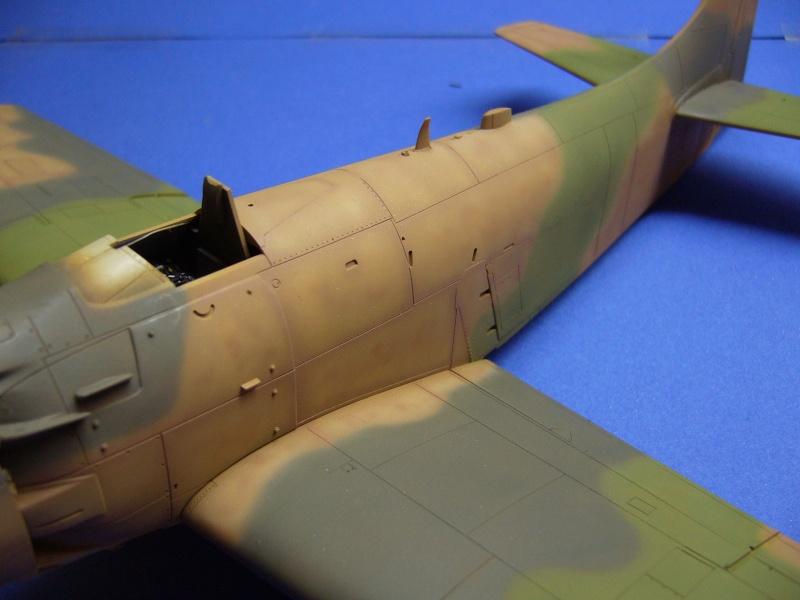 Douglas A1H Skyraider SVNAF  P1020322