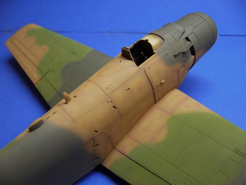 Douglas A1H Skyraider SVNAF  P1020323