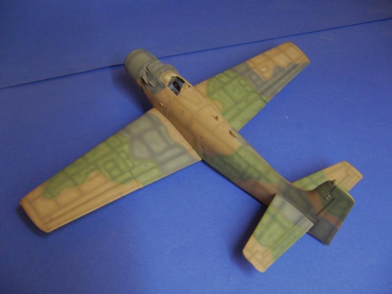 Douglas A1H Skyraider SVNAF  P1020343