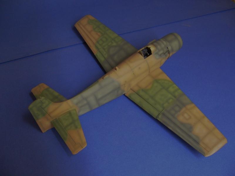 Douglas A1H Skyraider SVNAF  P1020344