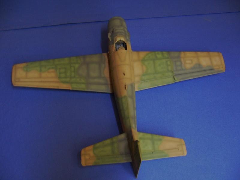 Douglas A1H Skyraider SVNAF  P1020345