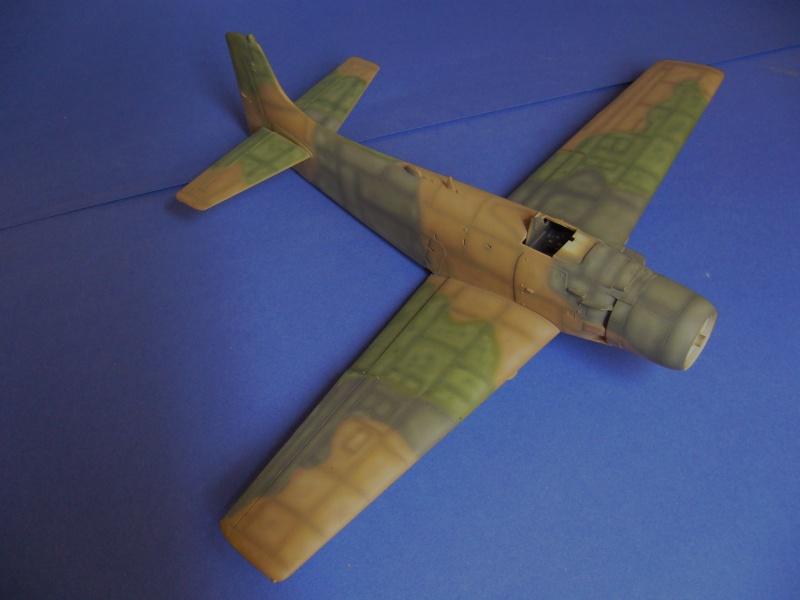 Douglas A1H Skyraider SVNAF  P1020347