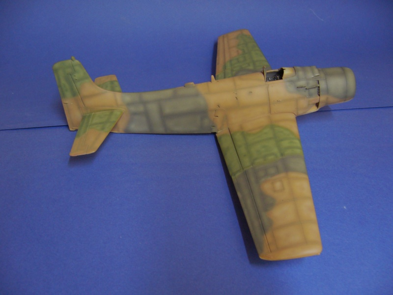 Douglas A1H Skyraider SVNAF  P1020348