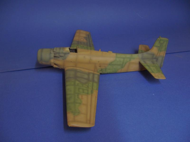 Douglas A1H Skyraider SVNAF  P1020349