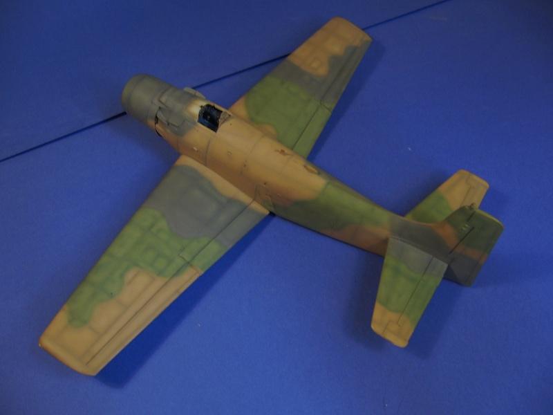 Douglas A1H Skyraider SVNAF  P1020350