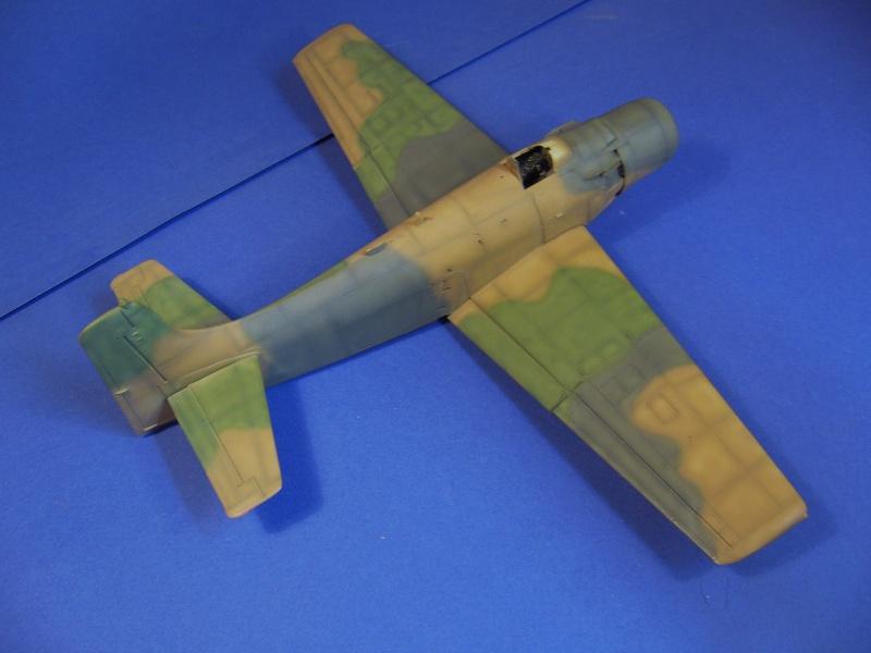 Douglas A1H Skyraider SVNAF  P1020351