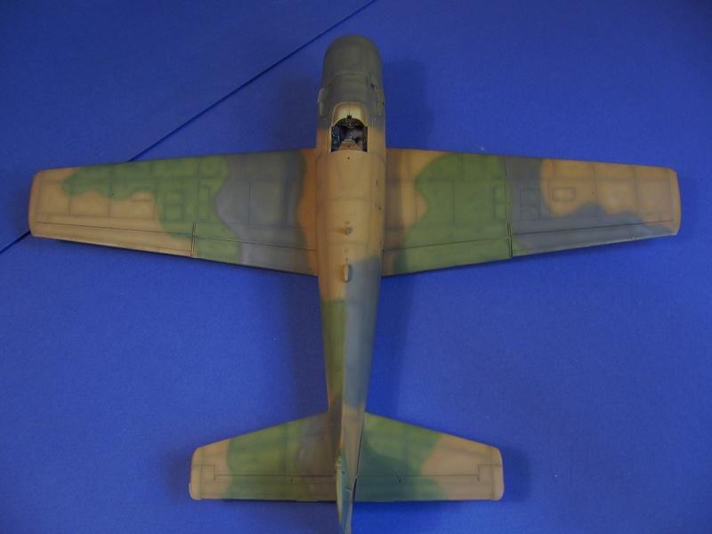 Douglas A1H Skyraider SVNAF  P1020352