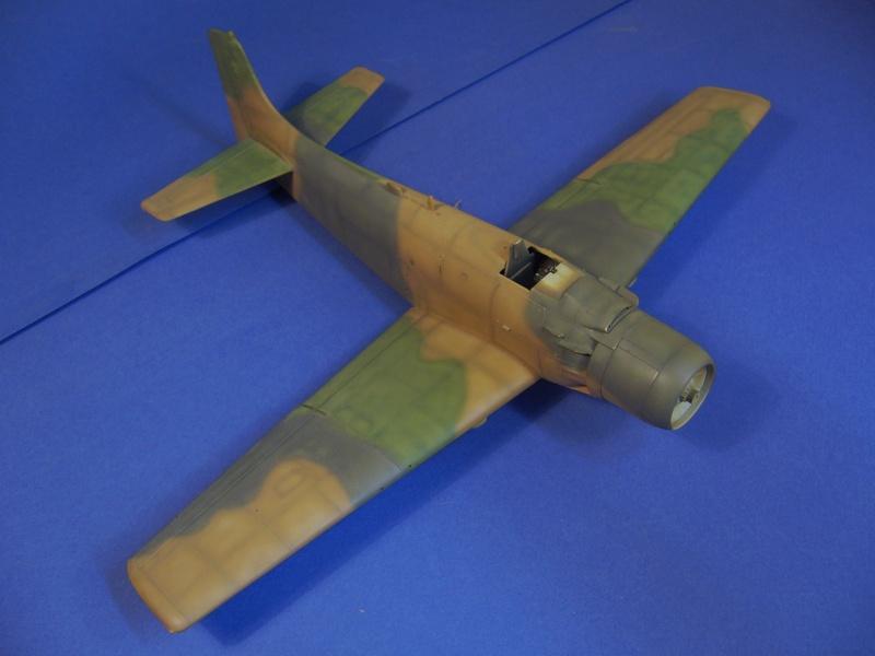 Douglas A1H Skyraider SVNAF  P1020353