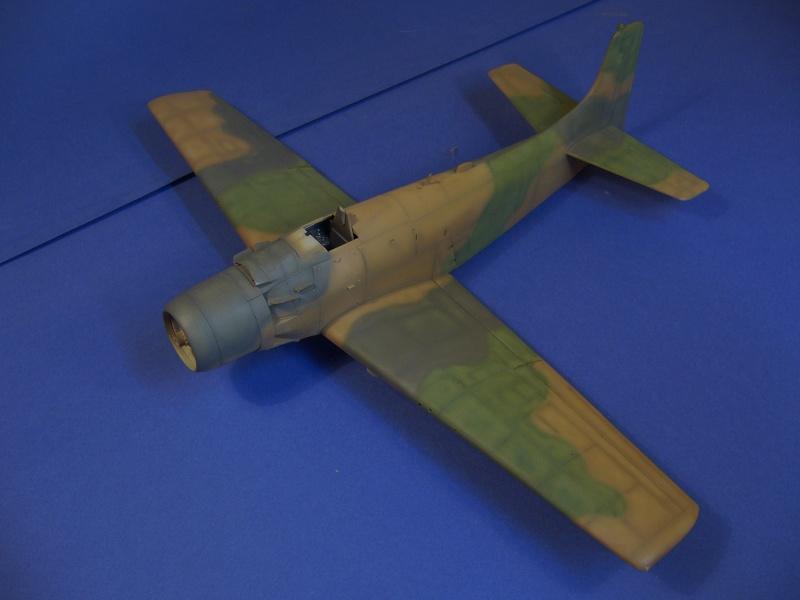 Douglas A1H Skyraider SVNAF  P1020354