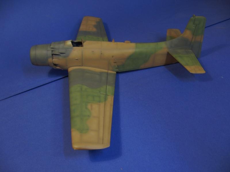 Douglas A1H Skyraider SVNAF  P1020355