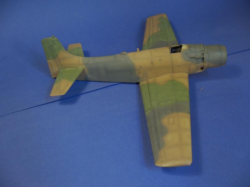 Douglas A1H Skyraider SVNAF  P1020356
