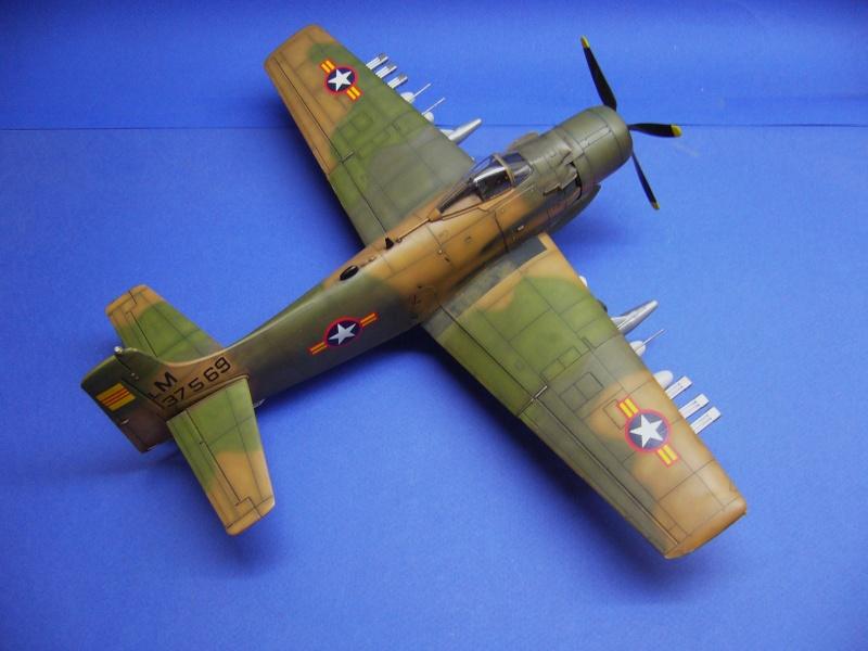 La vitrine de French Air Kit, les avions aux couleurs étrangères P1020362