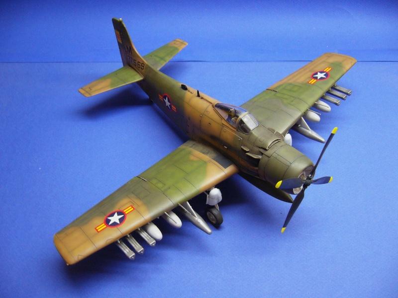 La vitrine de French Air Kit, les avions aux couleurs étrangères P1020363
