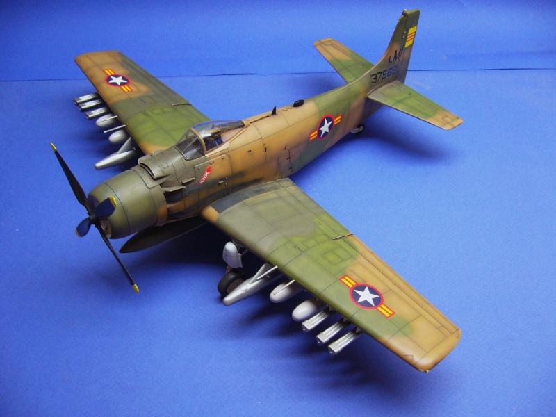 La vitrine de French Air Kit, les avions aux couleurs étrangères P1020364