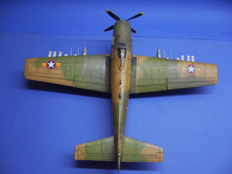 La vitrine de French Air Kit, les avions aux couleurs étrangères P1020366